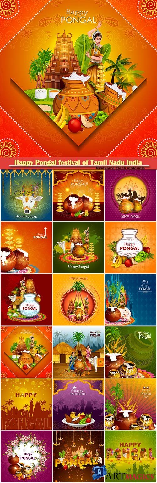 Happy Pongal festival of Tamil Nadu India vector background