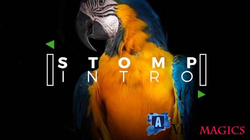 Stomp Intro 55758 - After Effects Templates