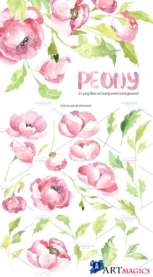 Pink watercolor peony PNG set 2097849