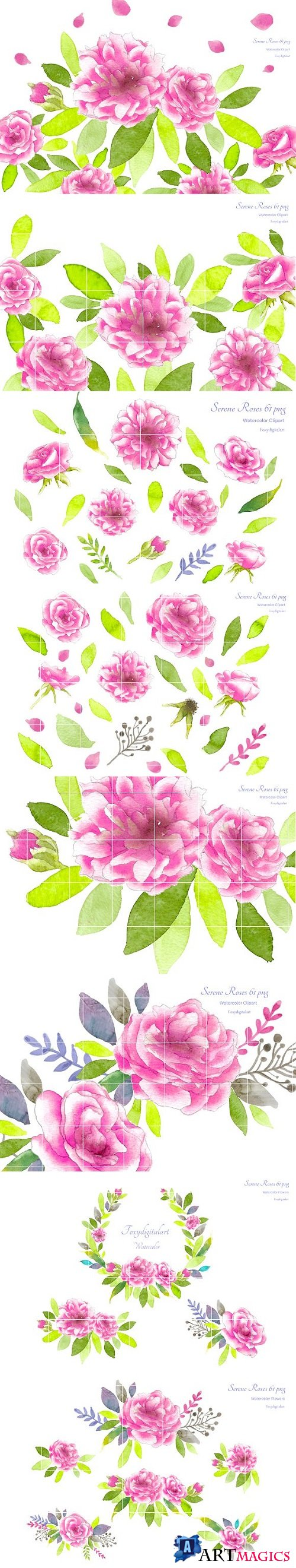 Pink Roses Watercolor Flowers CL59 2089438
