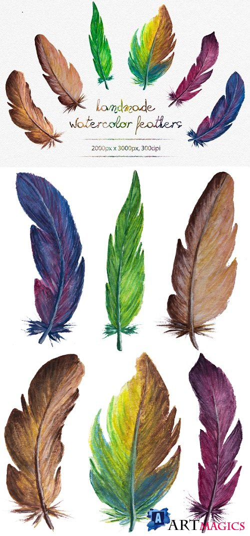 Watercolor Feathers - 873887
