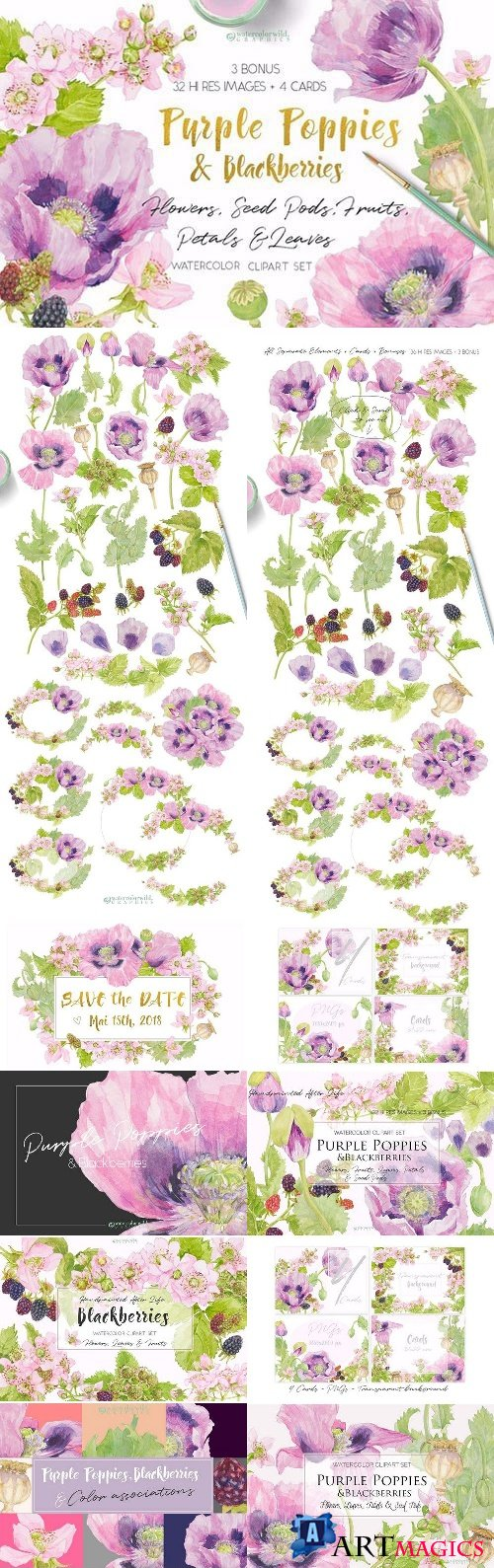 Purple Poppies & Blackberries-Clipart - 1575670