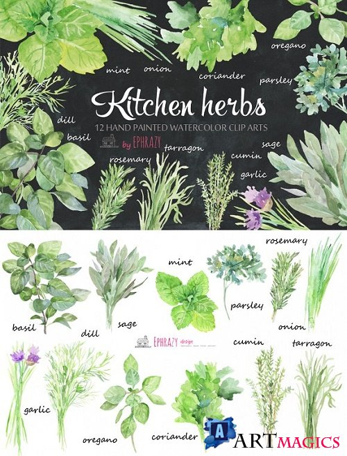Kitchen herbs. Watercolor clipart 1576638