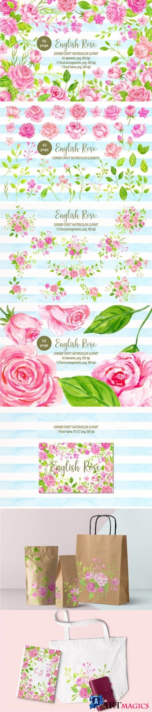 Watercolor English Rose Collection - 2500350
