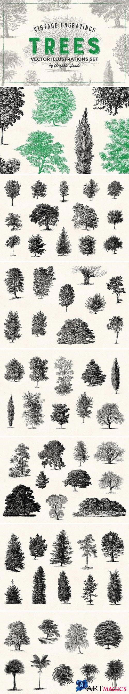Trees - Vintage Illustrations Set 1566833