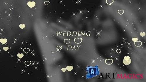 Wedding Titles 92645 - After Effects Templates