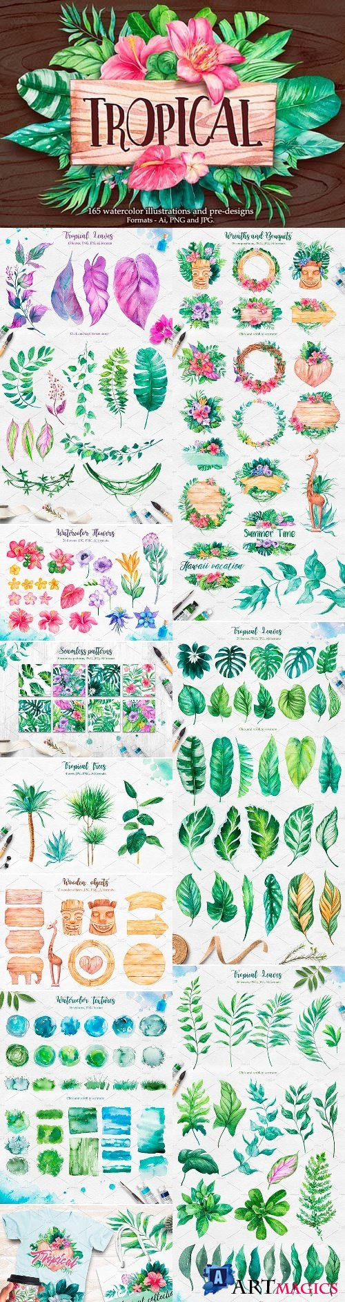 Tropical Watercolor illustrations - 2379405