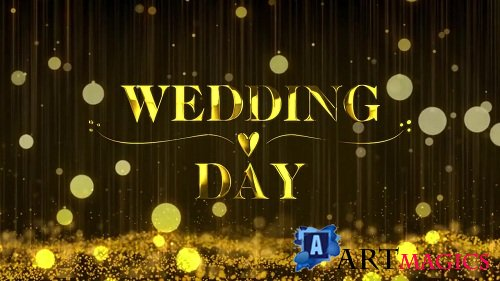 Wedding Promo 100492 - After Effects Templates