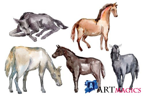 Farm animals:Horse,foal Watercolor - 373221