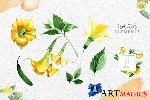 Yellow Brugmansia PNG watercolor set - 3098794