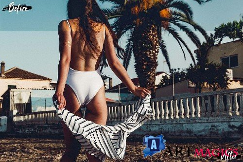 Neo Beach Gypsy Theme Desktop Lightroom Presets - 269321