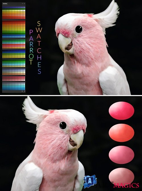 Parrot Swatches - 3865452