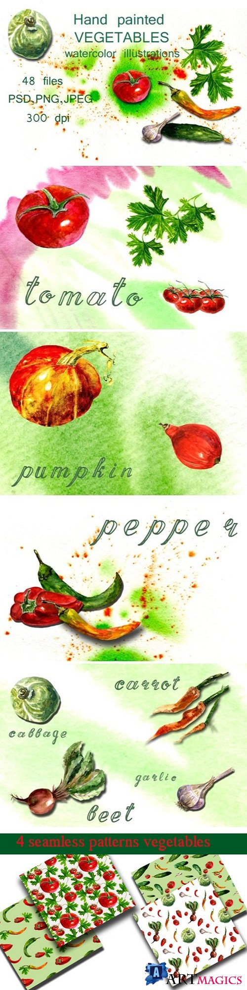 Watercolor Illustrations Vegetables - 1657912