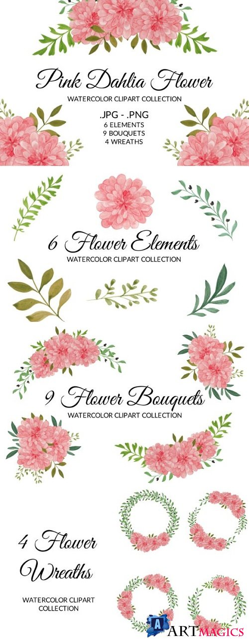 Pink Dahlia Flower Watercolor Clipart