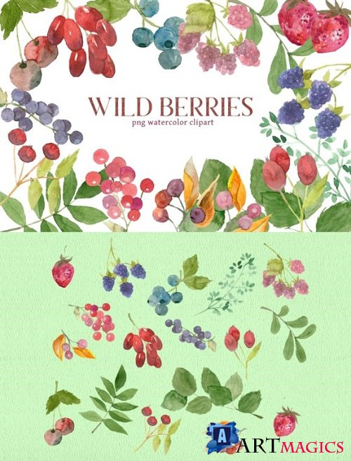 Mixed Berries Watercolor Clipart