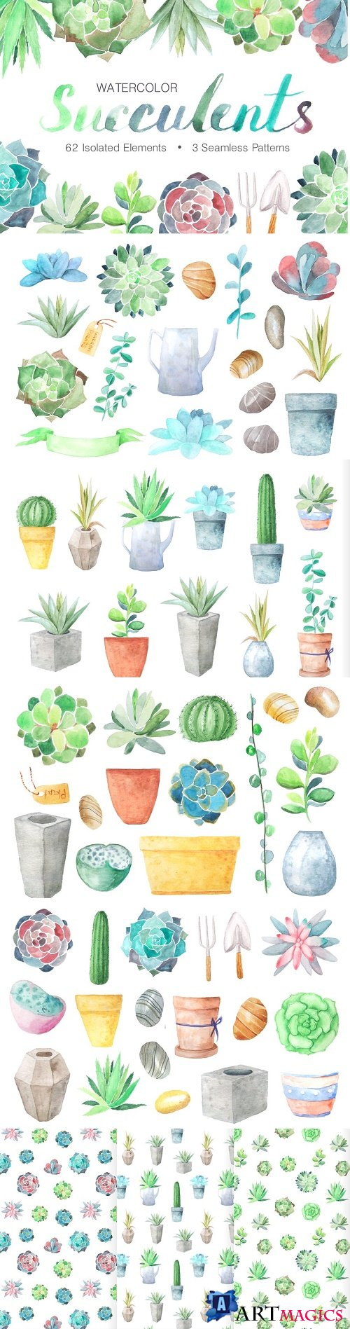 Watercolor Succulents Collection - 1254088