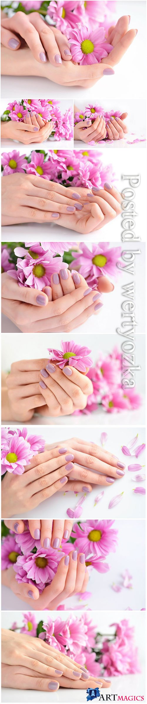 Beautiful manicure, hands with flowers