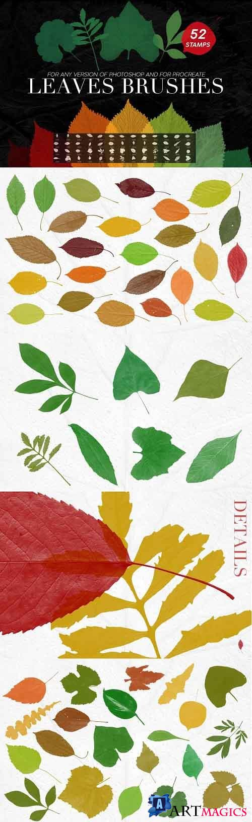 Leaves Photoshop Stamp Brushes - 5238321