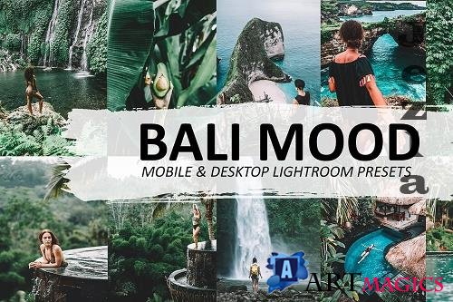 CreativeMarket - Bali Mood Lightroom Preset 5570074