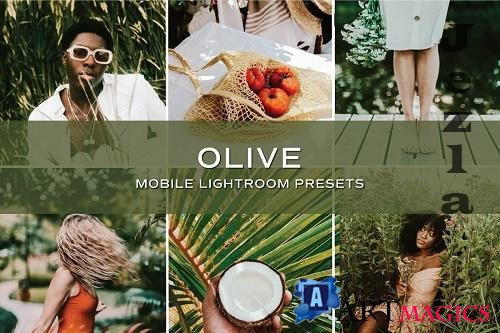 CreativeMarket - 5 Olive Lightroom Presets 5701778