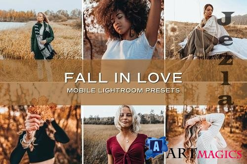 CreativeMarket - 5 Fall Lightroom Presets 5701788