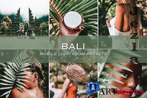 CreativeMarket - 5 Bali Lightroom Presets 5701724