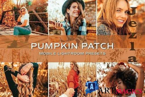 CreativeMarket - 5 Fall Lightroom Presets 5701790