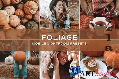 CreativeMarket - 5 Fall Lightroom Presets 5701789